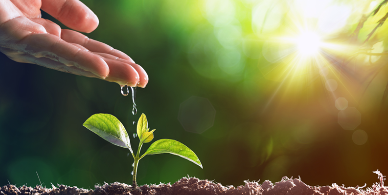 Lead nurturing with marketing automation